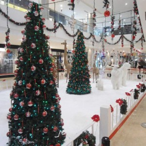 christmas places in bangalore