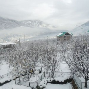christmas places in manali