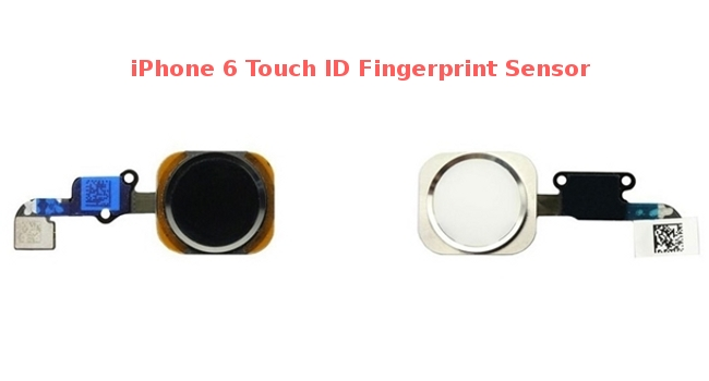 iPhone 6 Touch ID Sensor