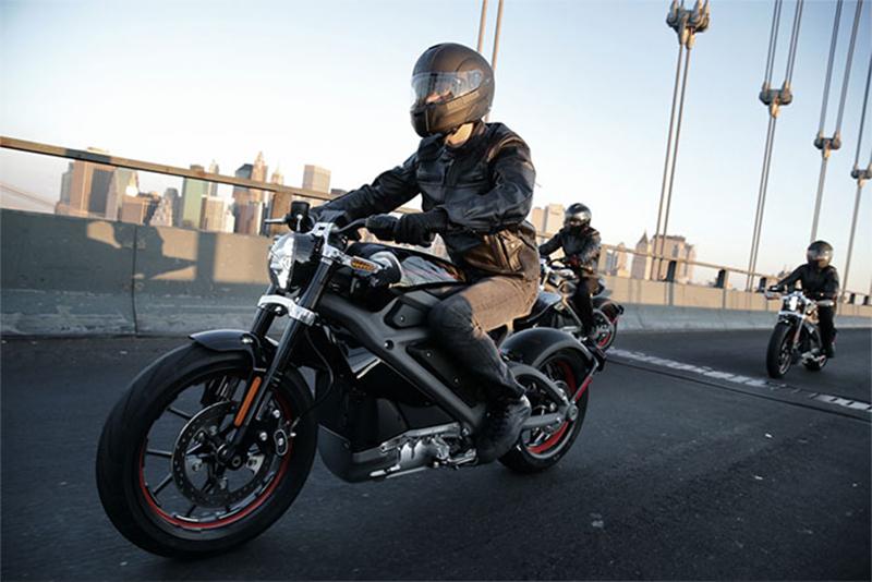 harley davidson cruiser motorcycle