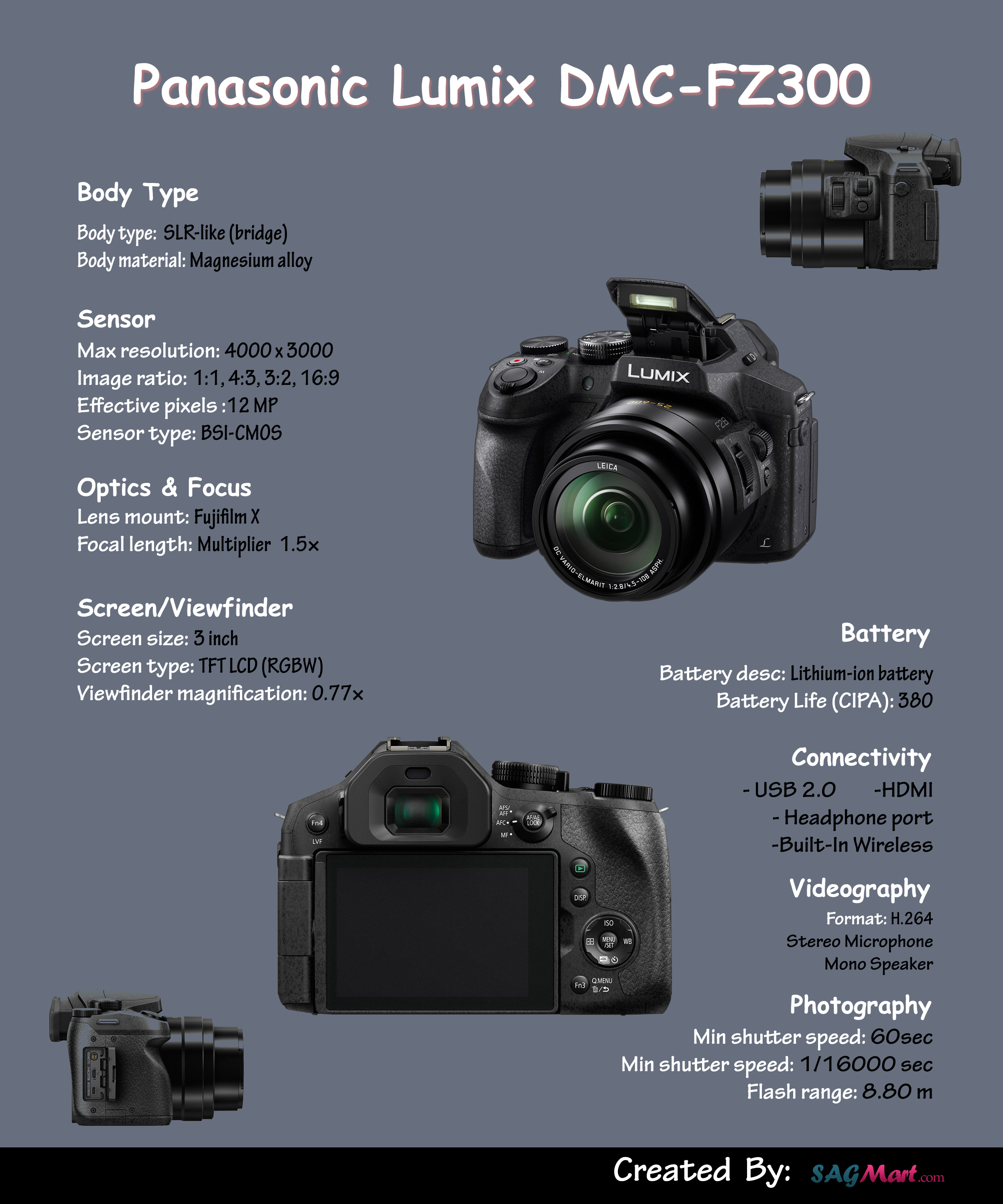 Panasonic Lumix DMC FZ300 [Infographics]