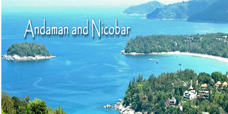 A food guide to those taking a trip to andaman and nicobar for Andaman and nicobar islands cuisine