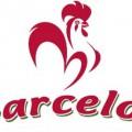 BarcelosDelhi